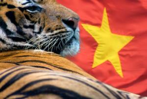 Việt Nam liệu có trở thành con hổ châu Á mới?
