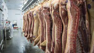 Belarus cấm nhập khẩu thịt lợn từ Nga